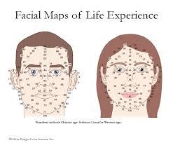 Chinese Medicine Face Reading Chart The Facial Map Akupunkturakademin