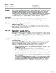 Resume Examples Sales Delightful Objective For Sales Associate