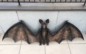 papier mache bat painting finished