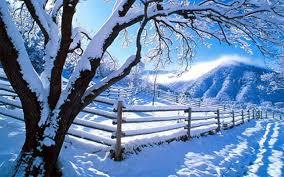 hd winter nature wallpapers.  Winter 5120 X 3200  4K UHD WHXGA Inside Hd Winter Nature Wallpapers E