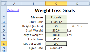 Biggest Loser Excel Spreadsheet Updated Excel Weight Loss Tracker Contextures Blog