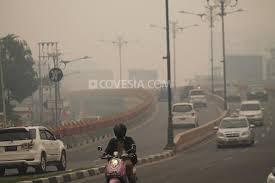 Hasil gambar untuk udara perkotaan