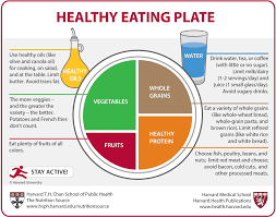 Daily Diet Chart For Good Health Healthy Eating Plate The Nutrition Source Harvard T H