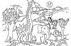 Zoo Coloring Pages Baby Animal Phonics Preschool Of Animals Page