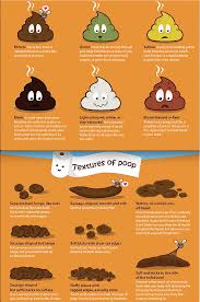 Poo Colour Chart Know Your Poo Health Health Facts Gut Health