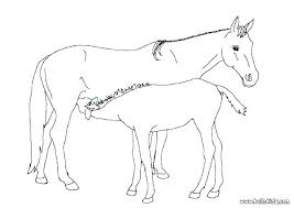 Realistic Race Horse Coloring Pages Horse Printable Coloring Pages