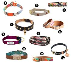 dog milk holiday gift guide  awesome dog collars leashes and
