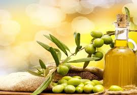 Image result for the nature of olive oil