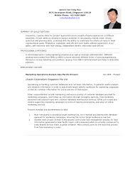Customer Service Resume Summary Of Qualifications Fishingstudio Com