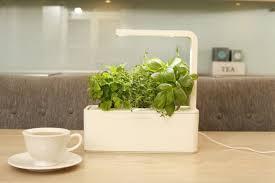 smart herb garden from grow