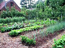 surprising how to design a garden layout garden design layout best garden layout design best of