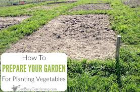 garden planting. how to prepare a garden bed for planting vegetables