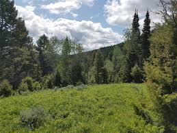 <b>Lots</b> 2 & 3 <b>Shining</b> Mountains III, Ennis, MT 59729 | MLS#: 344659 ...