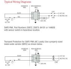 intrinsically safe pak® typical wiring diagrams