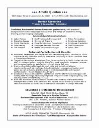 Sample Resume For Experienced Hr Executive Best Sample Resume Of Experienced Hr Executive Bluegenieco 3