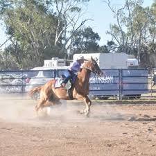 Tracey Porter, 3D barrel racing, Ayers Jackpot. | Buy Photos Online | Coffs  Coast Advocate