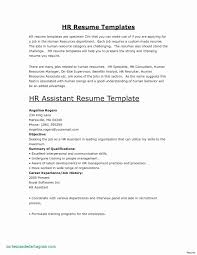 Fashion Merchandising Resume Skills 17 Worst Things To Say On Your