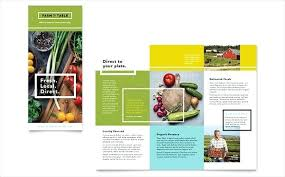 Pamphlet Template For Word 2007 Brochure Format In Word Food Brochure Template Word Brochure