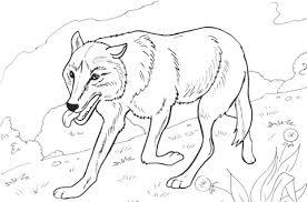 Wolf Rent In Het Bos Kleurplaat Gratis Kleurplaten Printen
