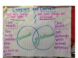 compare contrast essay compare and contrast