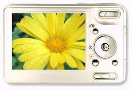 Image result for camera with flower clipart