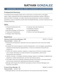 Product Manager Resume Magnificent Best Senior Product Manager Resumes ResumeHelp