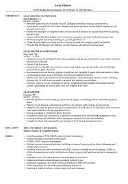 Lead Server Sample Resume Lead Server Resume Samples Velvet Jobs 1