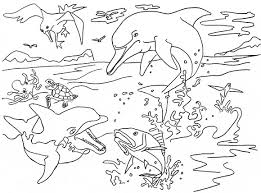 River Dolphin Coloring Page Animals Town Animals Color Sheet