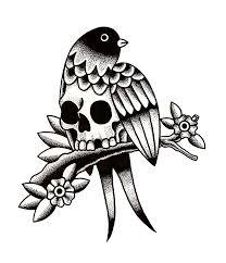 Bird of skull