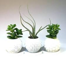 indoor ceramic plant pots round ceramic plant pots indoor ceramic pots ceramic pots for indoor plants