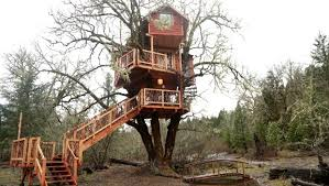 treehouse masters brewery. Treehouse Masters Mirrors Childrens Tree House. House Brewing Co. Brewery