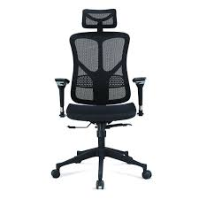 Argomax Mesh Ergonomic Office Chair EM Ec001   eBay