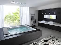 bathtubs idea bathtub brands bathtub brands reviews modern bathroom design bathroom interior design 2017