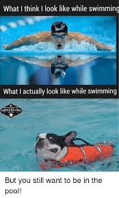 memes pool and swimming what i think i look like while swimming what
