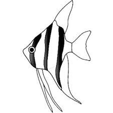 Small Picture Cute Little Angel Fish Coloring Page Coloring Sky