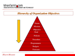 Hierarchy Of Organization Objectives