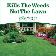 expert gardener weed and feed.  And Expert Gardener 15000 Square Feet Weed And Feed Lawn Fertilizer 2803   Walmartcom With And