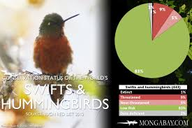 Chart The Worlds Most Endangered Swifts And Hummingbirds