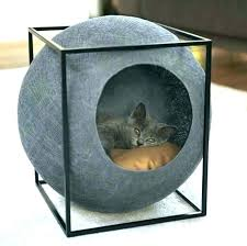 Chic cat furniture Cat Tree Modernist Cat Modern Cat Furniture Best Modern Cat Furniture Images On Copy Chic Outdoor Curio Pet The Family Handyman Modernist Cat Modern Cat Furniture Best Modern Cat Furniture Images