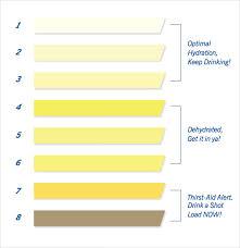 Printable Urine Output Chart 9 Sample Urine Color Charts Pdf