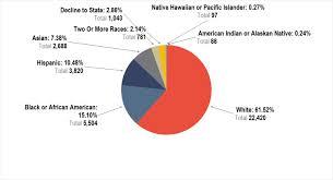 figure 13 race ethnicity staff percenes