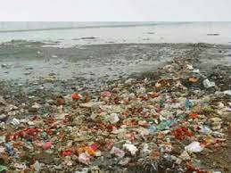 ガンジス 川 汚染