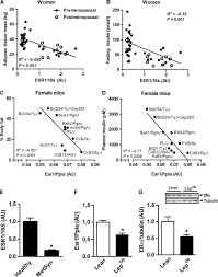 Skeletal Muscle Action Of Estrogen Receptor α Is Critical For The