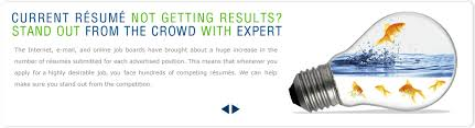 Sample Of Professional Resume Writing Services Free Www