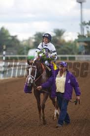 2014 Breeders Cup Charts 27 Best Take Charge Brandi Images Horses Take Charge
