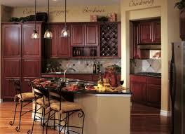 Kitchen Cabinet Color Schemes Kitchen Wonderful Modern Kitchen Color Combinations Color Designs