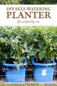 make your own self watering containers out of totes self watering containers are an
