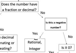 Classifying Numbers Graphic Organizer Flow Chart