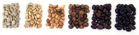 Light Medium Dark Roast Coffee Whats Your Roast Bonavita World