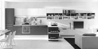 Modern Kitchen Shelving Modern Kitchen Shelving Ideas Dailycombatcom